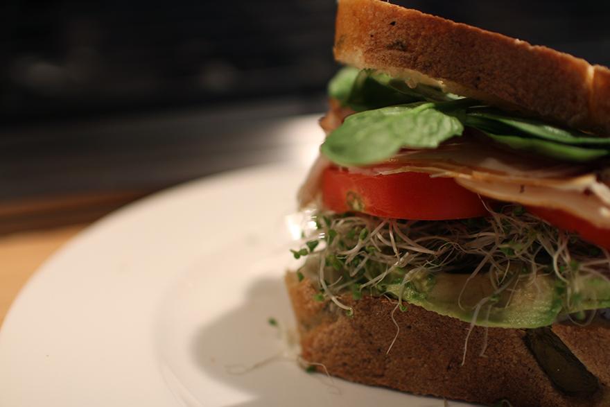 Skinny-Sandwich-10